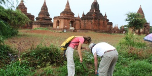 Responsible Travel, Tree Planting on Dry Zone Bagan